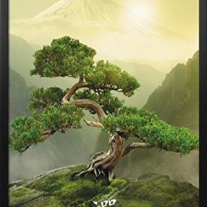 Zen-Mountain Framed Poster 26 x 38in