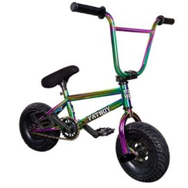 Fatboy Pro Mini BMX Bicycle